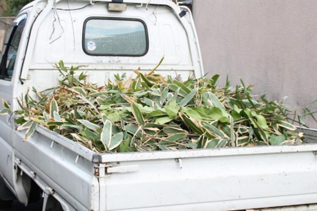 足立区不用品回収ライジング|植木・庭木関係 回収品目例